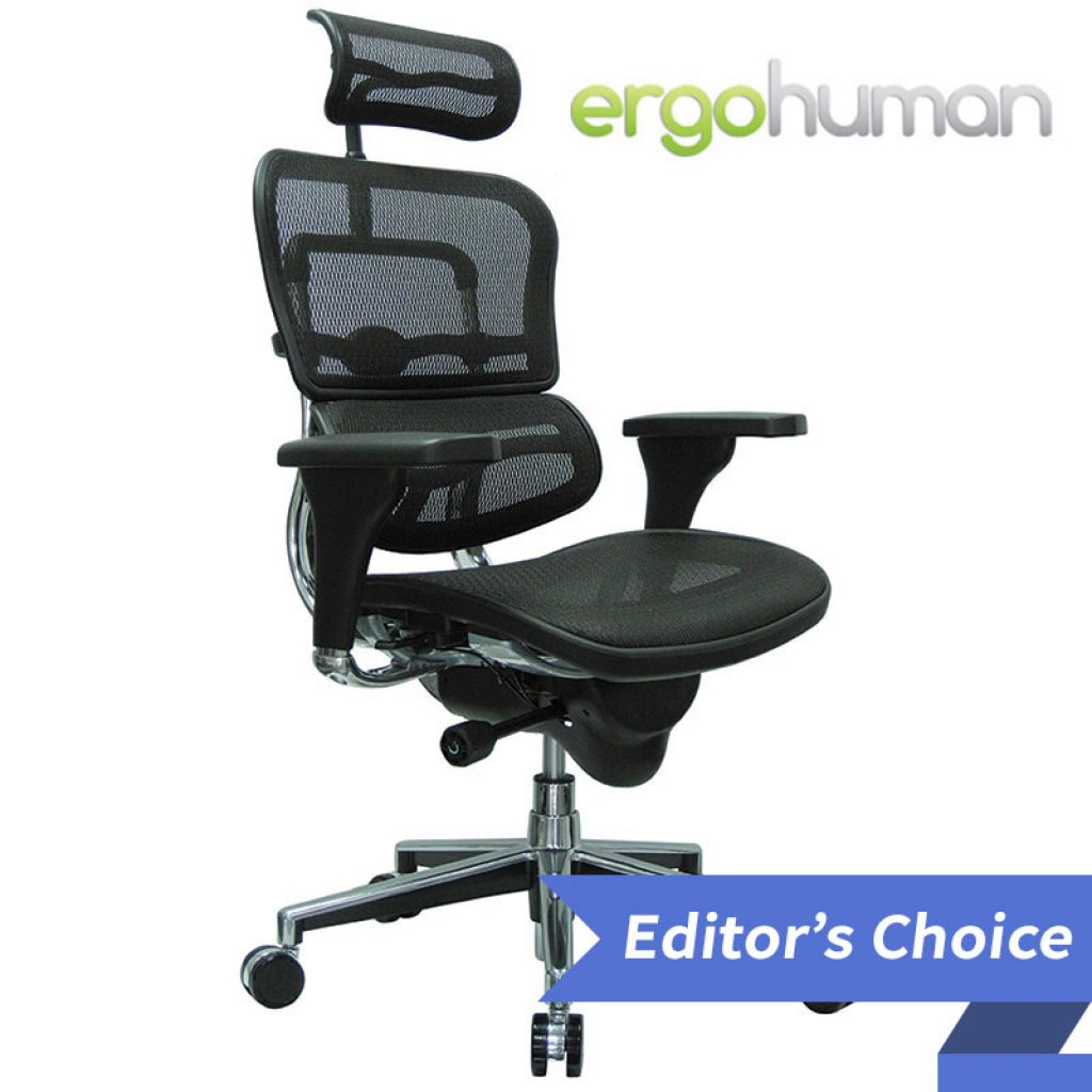 Ergo Human High Back Swivel Editors Choice