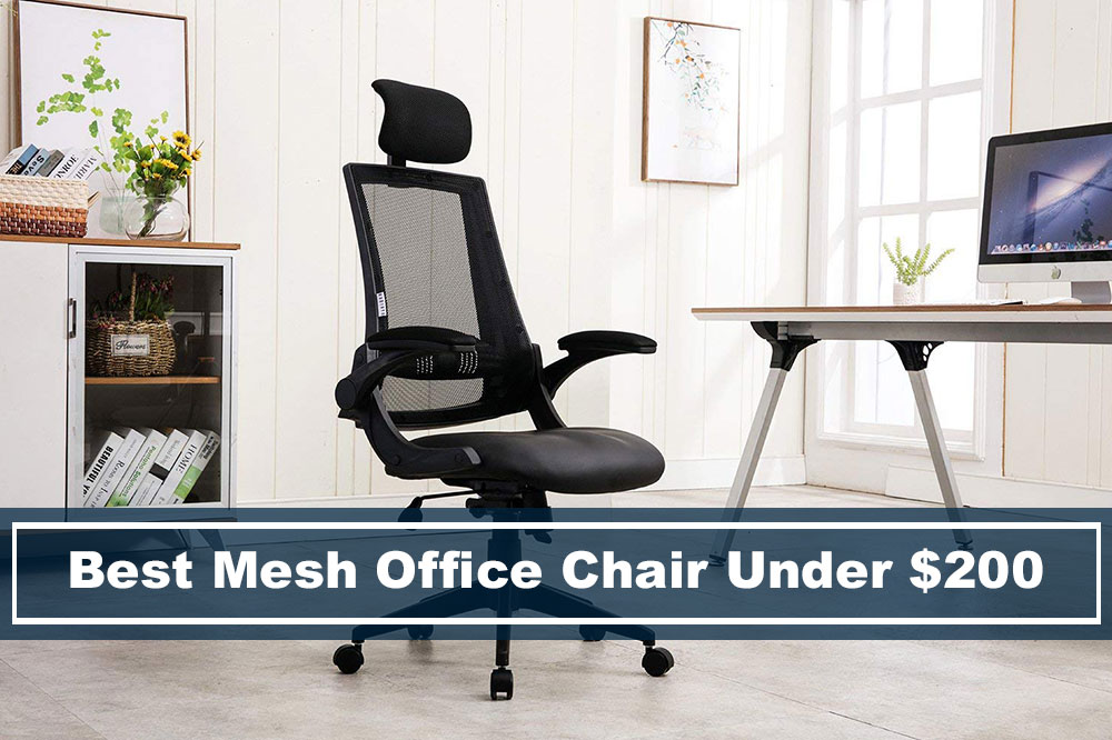 Best Ergonomic Mesh Chair Budget Under 200